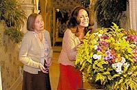 Divulga��o - 25.mai.2004